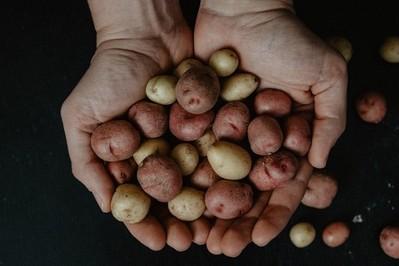 Obierki po ziemniakach: nie wyrzucaj! Zobacz, jak wykorzystać obierki z ziemniaków i być ZEROWASTE